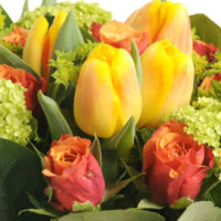 orange-tulip-rose-spring-zest-bouquet