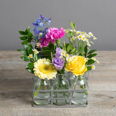 Foliage, rose, yellow, blue, pink, purple, glass milk bottles, fresh