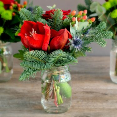 RED AMARYLLIS & FIR CHRISTMAS JAR TRIO
