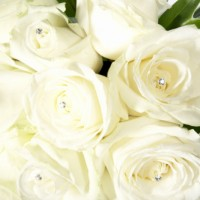 wedding flowers-000036
