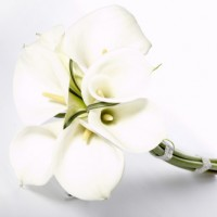 wedding flowers-000053