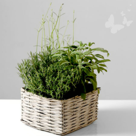 KITCHEN TABLE HERB WICKER BASKET