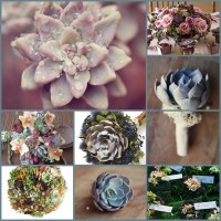 15 keentobeseen succulents wedding bouquets