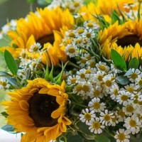 Sunflower And Daisy Summer Bouquet