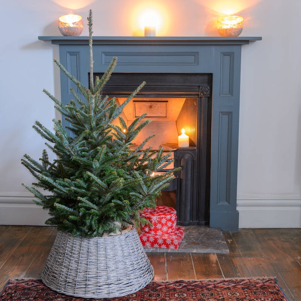 Make Alternative Christmas Tree: Top Tips For Alternative Christmas Trees