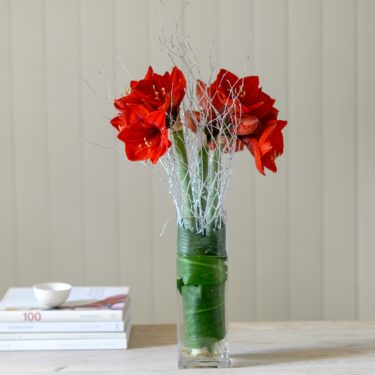 RED AMARYLLIS FLOWER BUNCH WITH SILVER TWIGS
