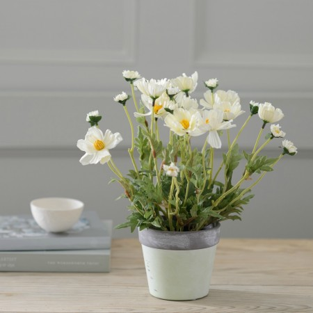 ARTIFICIAL COSMOS POTTED PLANT