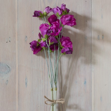 SILK PURPLE HAZE SWEET PEA BUNDLE