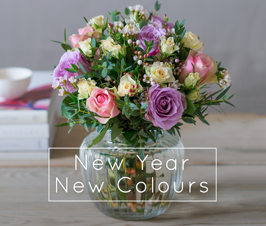 New Year New Colours