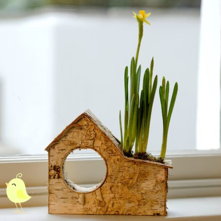 LITTLE BIRCH HOUSE SPRING BULB PLANTER with birds