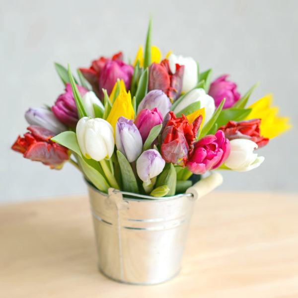 RAINBOW-LOVE-SPING-TULIP-FLOWER-BUCKET-1-600x600