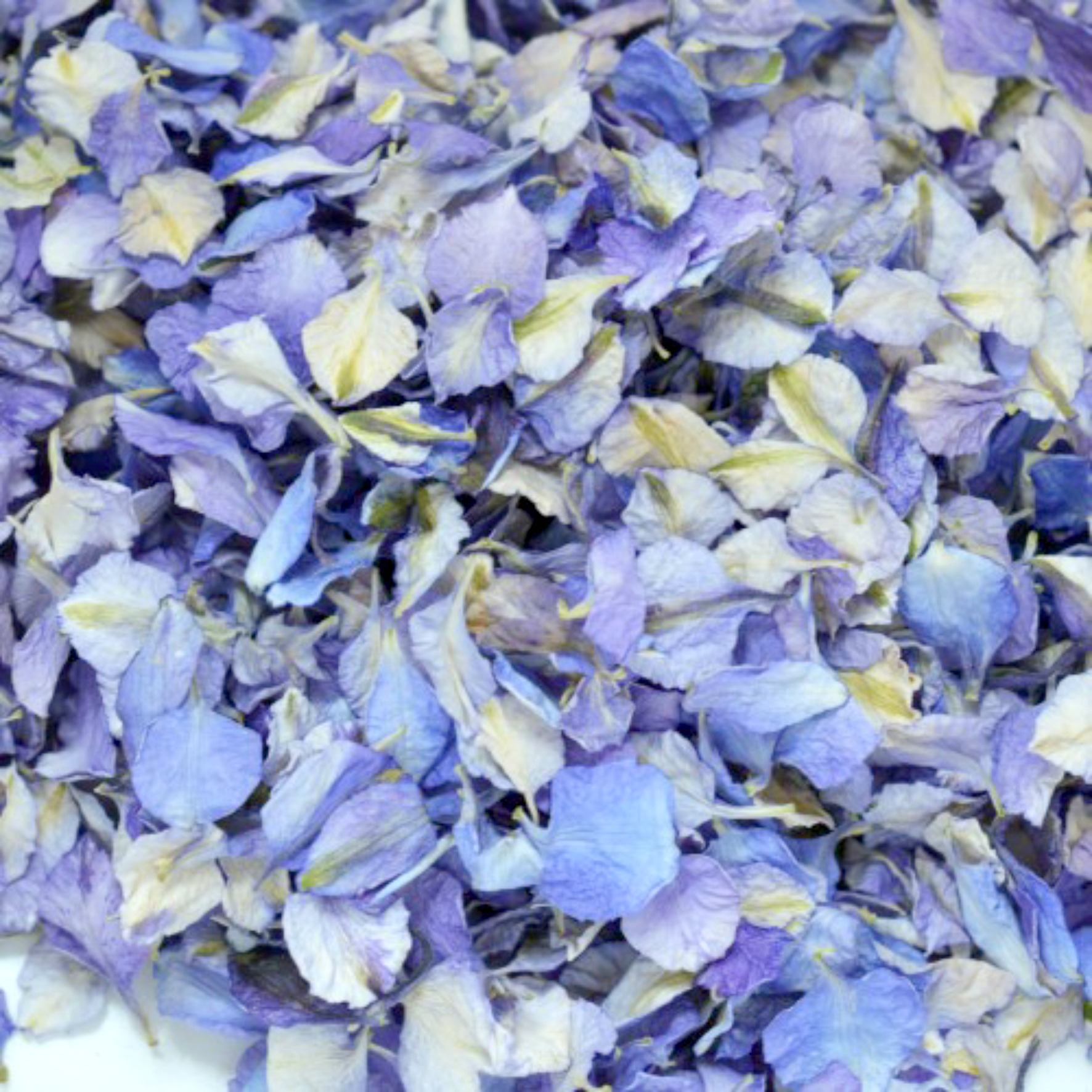 Petals Pint Of Biodegradable Delphinium Confetti