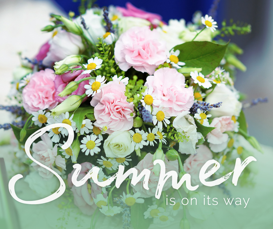 Summer from the Flower Studio