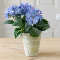 FAUX POTTED HYDRANGEA PLANT
