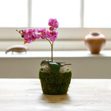LITTLE ARTIFICIAL PINK ORCHID IN MOSS POT