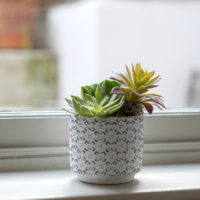 TRIO OF FAUX SUCCULENTS IN POT