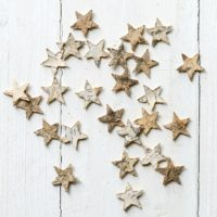 LITTLE BIRCH SCATTER STARS