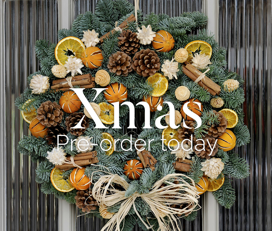 Xmas is coming - pre-order today