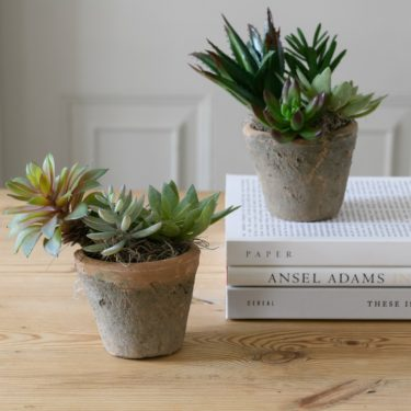 FAUX SUCCULENTS IN RUSTIC MOSS POT