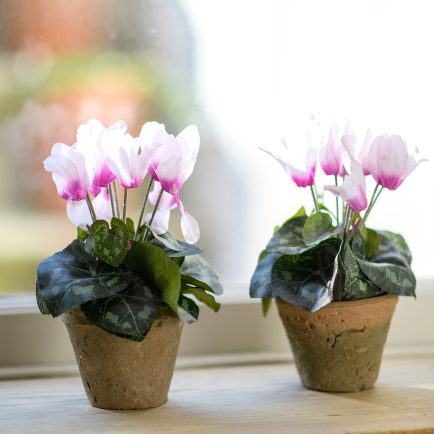 Botanist Faux Pink Cyclamen Hand Potted Plant Flower