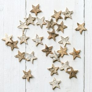 LITTLE-BIRCH-SCATTER-STARS-1