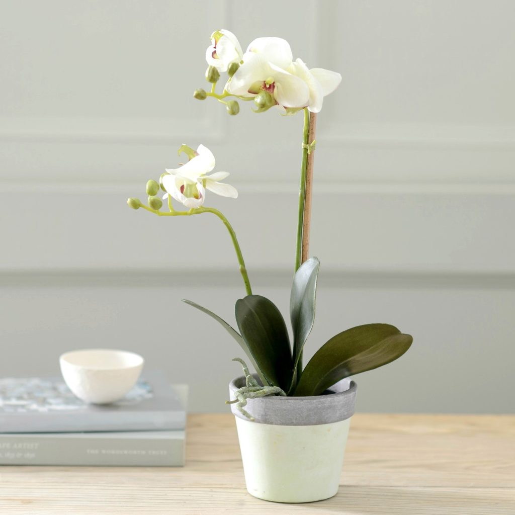 ARTIFICIAL-ORCHID-IN-CERAMIC-POT-1