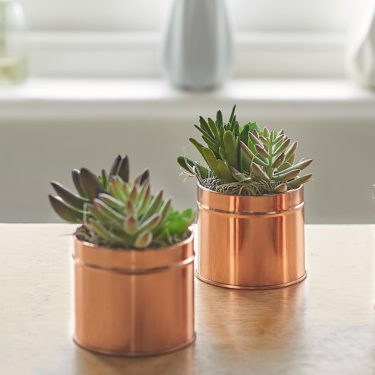 ARTIFICIAL SUCCULENTS IN COPPER POT