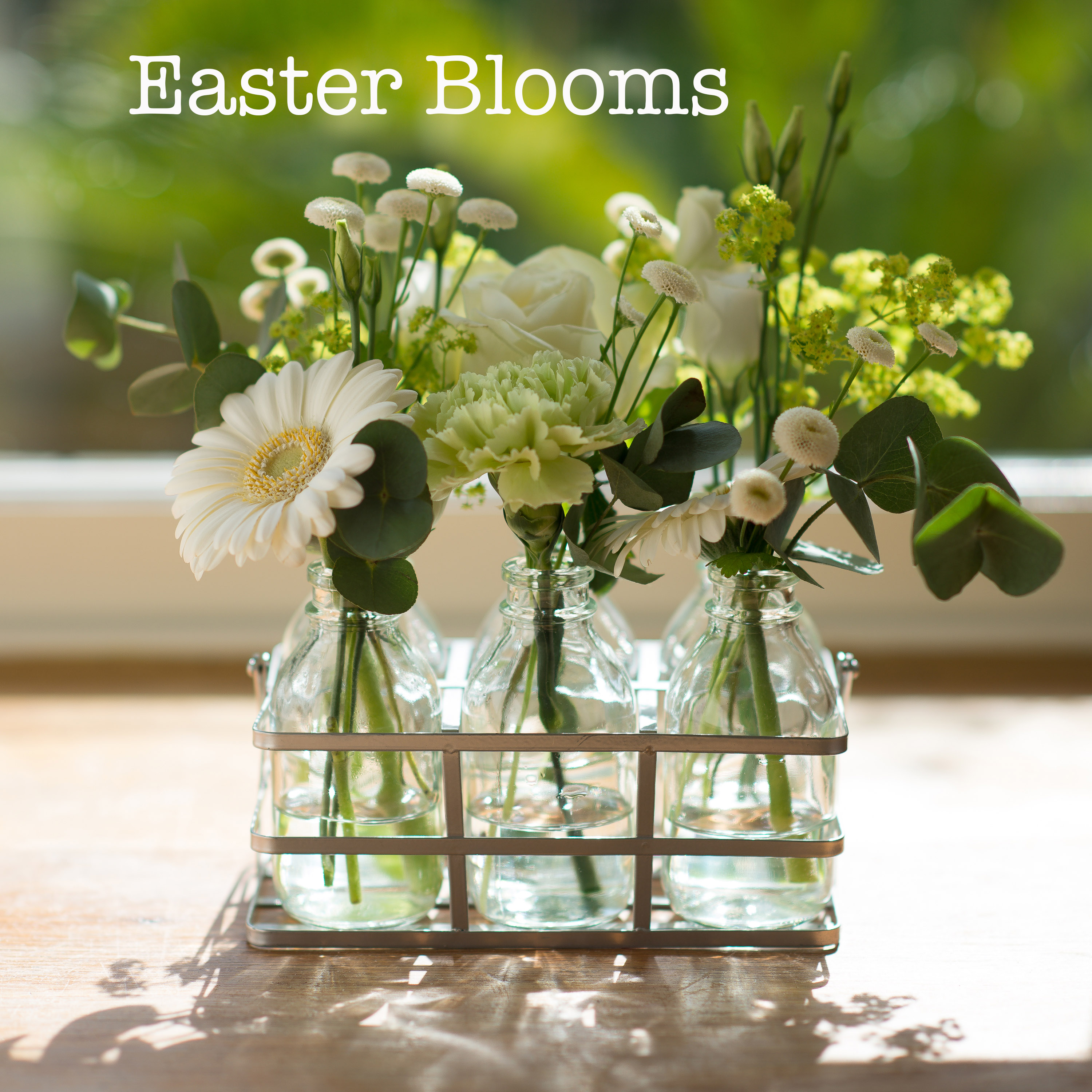 Easter Blooms