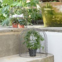 SET OF 2 WIRE PLANT CLOCHES