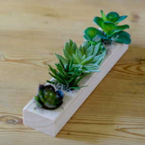 FAUX-SUCCULENTS-WITH-SPANISH-MOSS