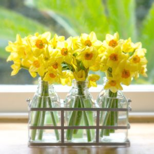SUNSHINE-NARCISSI-FLOWER-BOTTLES