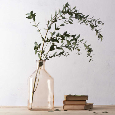 BOTANICAL BOTTLE VASE SALTED CARAMEL