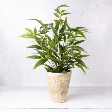 FAUX BAMBOO HOUSE PLANT IN CLAY POT