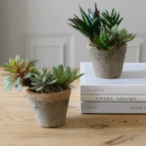FAUX-SUCCULENTS-IN-RUSTIC-MOSS-POT