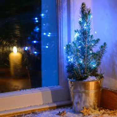 LITTLE NORDIC CHRISTMAS TREE IN SILVER BUCKET WITH STRING LIGHTS