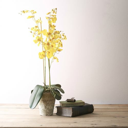 Faux Plant ~ Artificial Butterfly Yellow Orchid Hand-Potted Plant