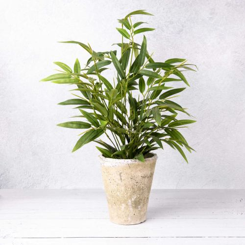 Faux Plant ~ Artificial Bamboo Plant In Rustic Ceramic Pot