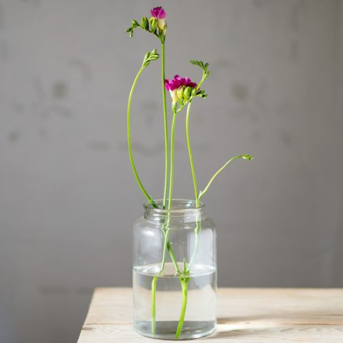 Vase ~ Botanical Mason Jar Glass Flower Vase