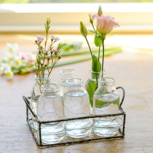 Glass Bottles ~ Mesh Basket & 6 Vases