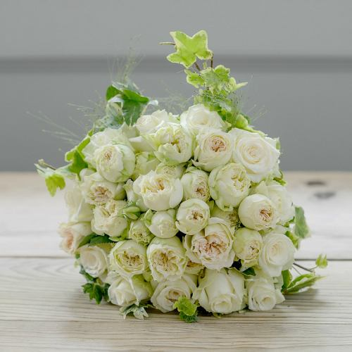 Designer ~ Buttermilk Fresh Rose & Garden Ivy Knot