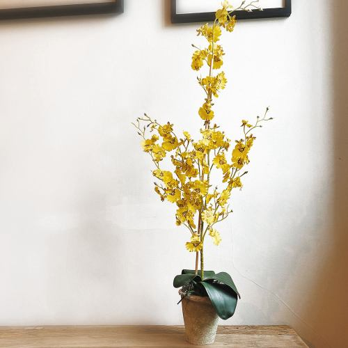 Faux Plant ~ Artificial Single Stem Butterfly Yellow Orchid Plant