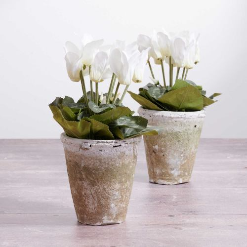 Plant Faux ~ White Cyclamen Pot